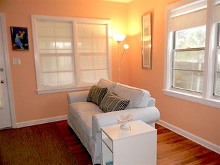 Cozy and peaceful newly remodeled home - Saint Petersburg vacation rentals