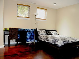 Perfect Private room with Internet Access and A/C - Chicago vacation rentals