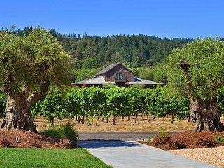 The Residence at Comstock Wines, Sleeps 8 - Healdsburg vacation rentals