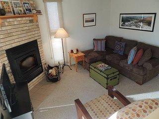 Sugarbush Mad River Charming 1 BR Condo - Warren vacation rentals