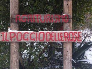 Agriturismo Il Poggio Delle Rose - Domicella vacation rentals