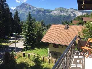 10 bed chalet < 500m from village & lift, outdoor - Les Carroz-d'Araches vacation rentals