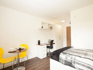 ServicedLets London Park House Premium - Luton vacation rentals