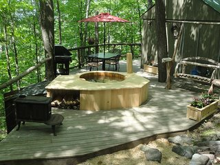 Vermont Tree Cabin - A Cozy Retreat - Saint Johnsbury vacation rentals