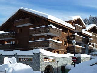 B8, ski apt, sleeps 6, FREE WIFI, secure parking - Les Carroz-d'Araches vacation rentals