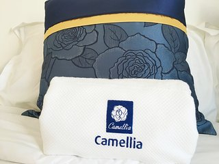 Camellia Guest House, Walvis Bay, Namibia - Walvis Bay vacation rentals
