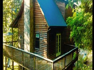Cozy Cabin with A/C and Satellite Or Cable TV - Cosby vacation rentals