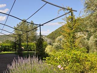 Agriturismo Il Borgo di San Michele - Marmore vacation rentals