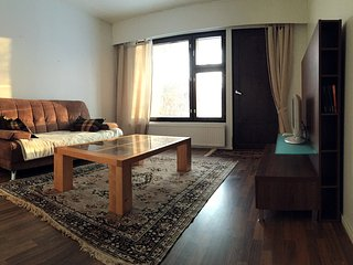 Nice Condo with Satellite Or Cable TV and Parking - Lieksa vacation rentals
