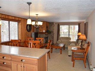 Bright 1 bedroom Vacation Rental in Winter Park - Winter Park vacation rentals