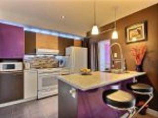 Luxury Open Space - Contemporary 3 1/2 Condos - Montreal vacation rentals
