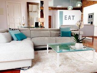 Luxury 2 bedroom brand NEW loft - CENTER of town - Santander vacation rentals