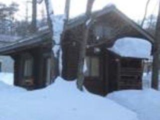Fully self contained Log Cabin in Hakuba - Hakuba-mura vacation rentals