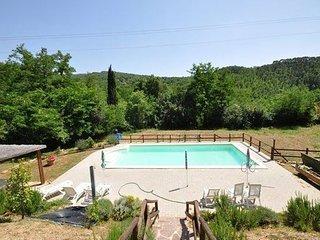 Apartment in Subbiano, Arezzo e Dintorni, Tuscany, Italy - Falciano vacation rentals