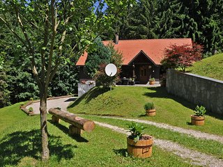Rogla Lodge - Chalet in Zrece, Slovenia - Zrece vacation rentals