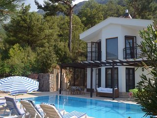 Villa Queen (PRIVATE) -Pool, OludenizArea, InGreen - Yaniklar vacation rentals