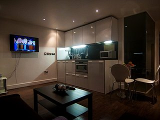 Lovely 1 bedroom Nottingham Apartment with Hot Tub - Nottingham vacation rentals