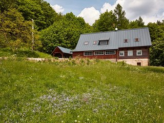 Giant Mountain Cottages - Hajenka - Rudnik vacation rentals