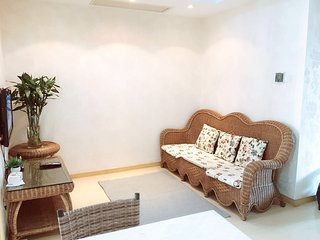 Great Layout/Open 1bdr/1lvr 70sqm Gym/Pool - Shanghai vacation rentals