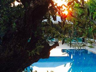 Appartamenti turistici Con piscina e bbq - Calmasino vacation rentals