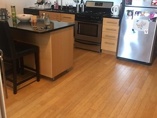 Cozy and Convenient Apt Close to Downtown Boston - Quincy vacation rentals