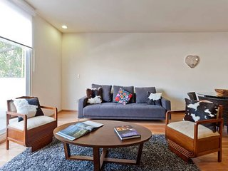 Business and Touristic neighborhood - Mexico City vacation rentals