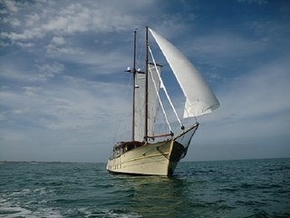 LE PETIT POUCET - Beautiful Wooden Schooner 60feet - El Porvenir vacation rentals