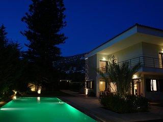 Villa In Saronida With Pool - Saronida vacation rentals
