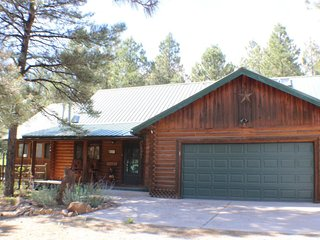 Antelope is a cute, pet-friendly cabin ideal for your vaction in Pagosa Springs. - Pagosa Springs vacation rentals