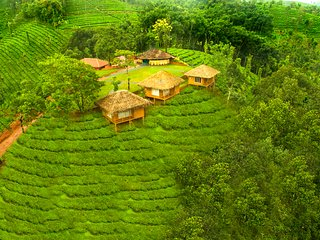Palm Cottages in Periya forest of Wayand, Kerala - Mananthavady vacation rentals