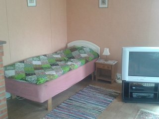 Apartment 1 room and Kitchen 60 m2 - Fellingsbro vacation rentals