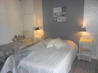 Logement proximité Puy du Fou,Poupet,Bord de Sevre - Saint-Michel-Mont-Mercure vacation rentals