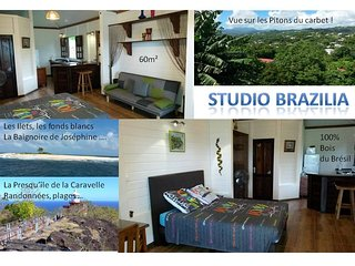 Studio BRAZILIA 60m² d'exotisme 100% bois - Le Robert vacation rentals