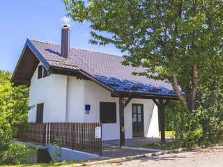 1 bedroom House with Washing Machine in Strigova - Strigova vacation rentals