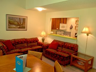38SW Deluxe Townhouse Style Condo at Mt. Baker - Glacier vacation rentals