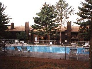 Maple 10, Dells Club Condo + Chula Vista WaterPark - Wisconsin Dells vacation rentals