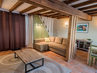 Nice House with Internet Access and Shared Outdoor Pool - Neuil vacation rentals