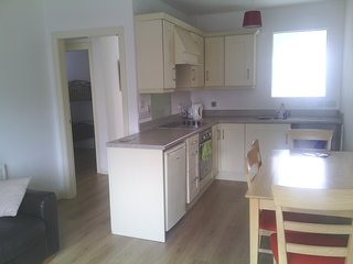 2 bedroom Condo with Internet Access in Dungiven - Dungiven vacation rentals