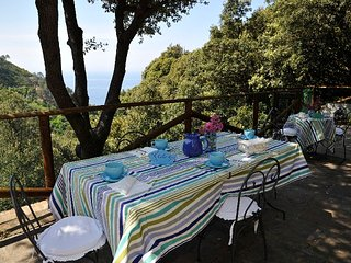 Charming Villa with A/C and Satellite Or Cable TV - Bonassola vacation rentals