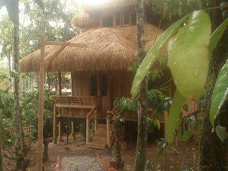 Bright 4 bedroom Villa in Meenangadi with Internet Access - Meenangadi vacation rentals