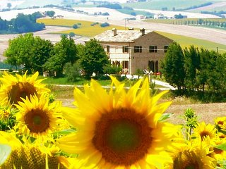 Nice House with Internet Access and Wireless Internet - Filottrano vacation rentals