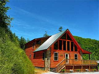 Creek & A View - Bryson City vacation rentals