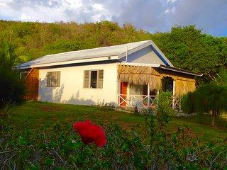 Cottage on the Sea/Beach/Kitchen / Cabana/ 1 ac Bd - Treasure Beach vacation rentals