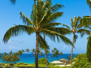 Free Midsize Car Kahala 132 Charming 1 bd very short walk to Poipu - Poipu vacation rentals