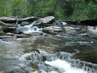 Beautiful 1 bedroom Boone Cabin with Internet Access - Boone vacation rentals