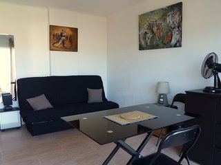 "Studio ""Santa Catalina"" 1 km Palais des Festivals - Cannes vacation rentals"