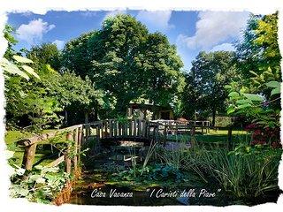 Casa Vacanze I Carioti della Piave - Breda di Piave vacation rentals