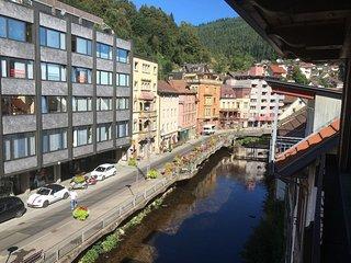 Große Ferienwohnung im Schwarzwald - Bad Wildbad vacation rentals