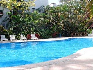 Snowbird special - Puerto Vallarta vacation rentals