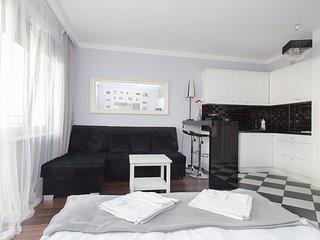 Luxury Studio in Heart of Warsaw - Warsaw vacation rentals